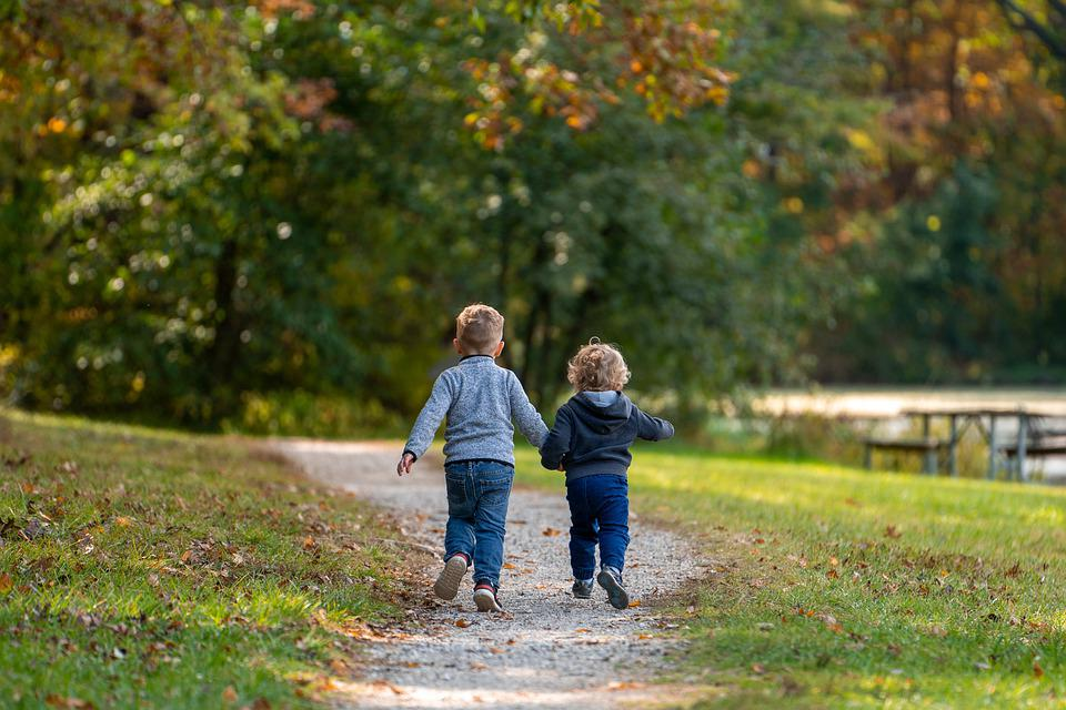 Boys, Children, Path, Trail, Park, Brothers, Trees