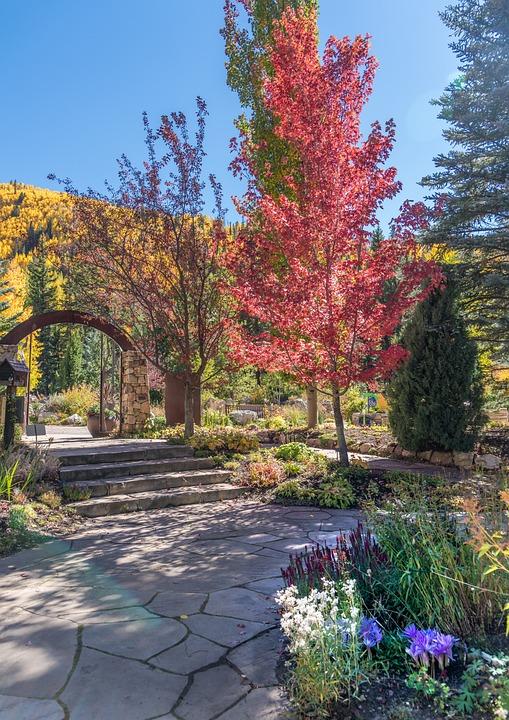Vail, Colorado, Betty Ford Park, Path, Foliage, Trees