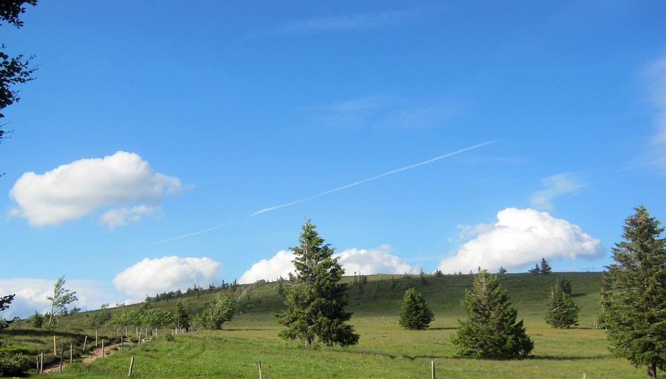 Panorama, Vosges, Trail, Path
