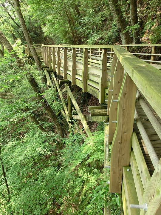 Wooden Walkway, Walkway, Path, Wood, Wooden, Outdoor
