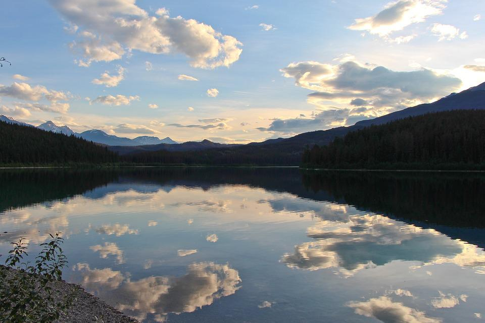 Patricia Lake, Lake, Dusk, Forest, Reflection, Water