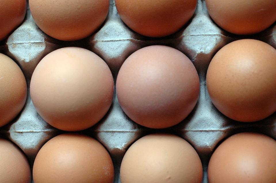 Eggs, Pattern, Food, Nutrition