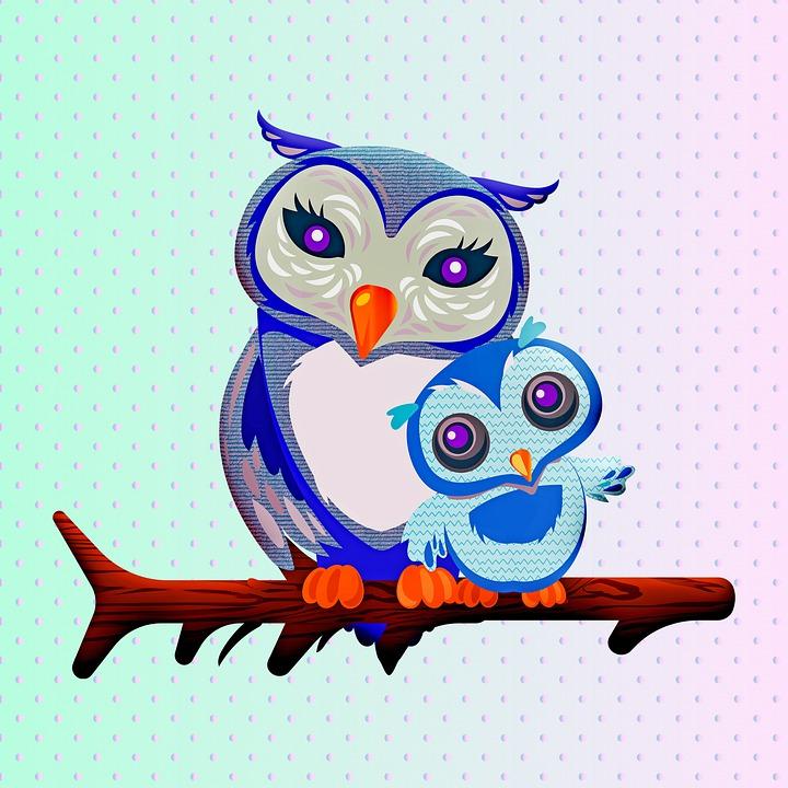 Owls, Birds, Polka Dot, Pattern, Digital Paper