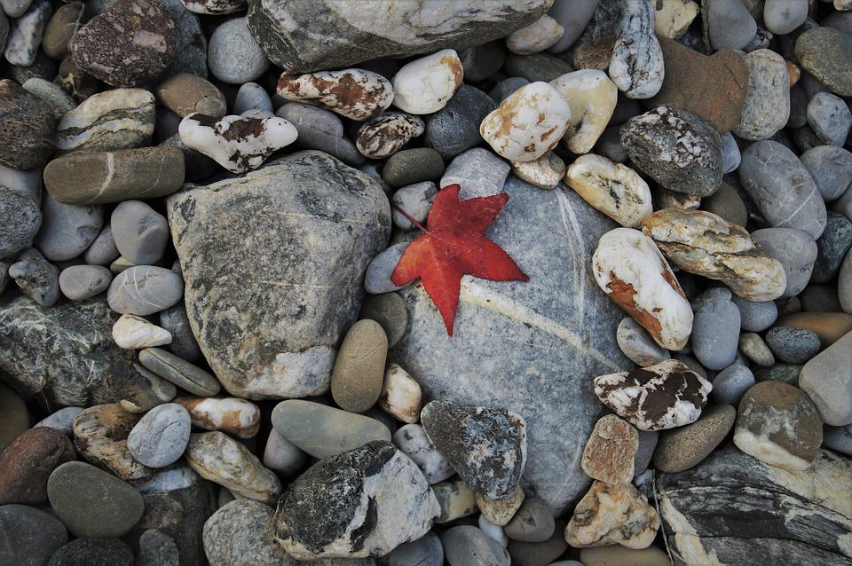 Gray, The Stones, Autumn, Leaf, Oct, Leaves, Pattern