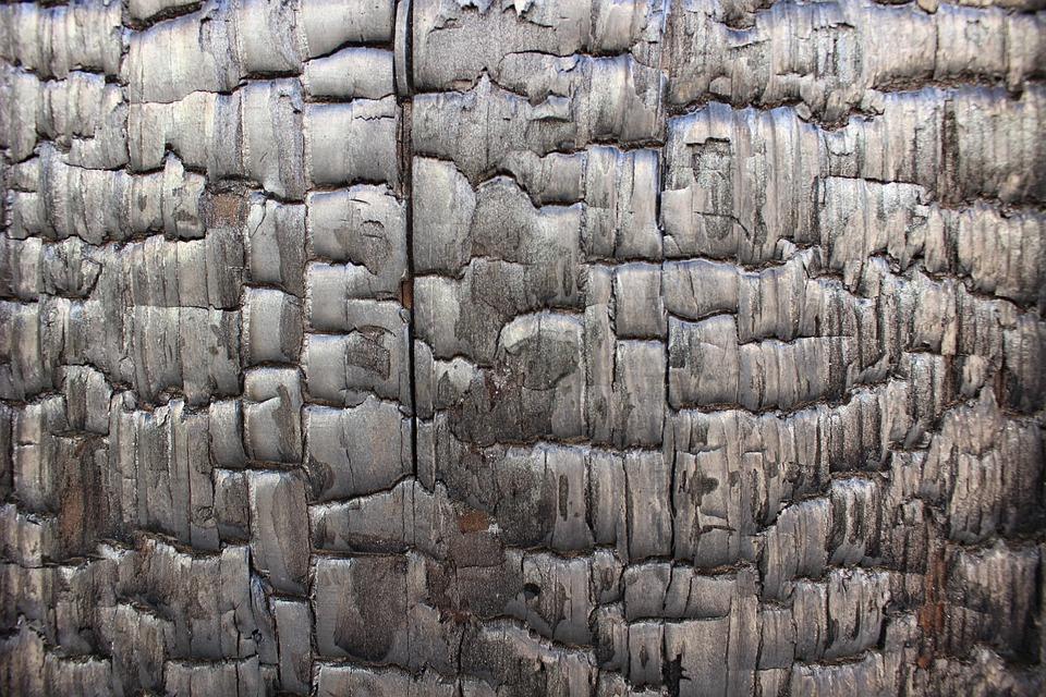 Pattern, Wood Grain