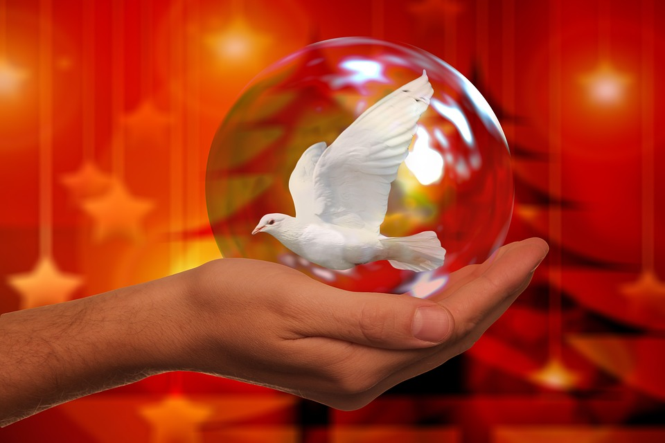 Christmas, Peace Dove, Harmony, Dove, Hand, Keep
