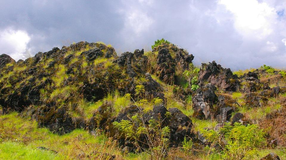 Mountains, Peaks, Greenery, Flora, Vegetation, Plants