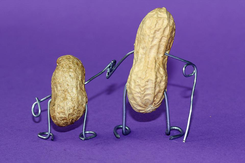 Peanut, Wire, Funny, Decoration, Metal, Art, Cheerful