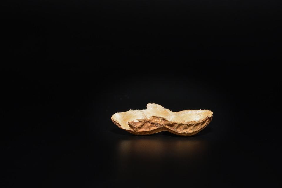 Peanut, Peanut Shell, Nutshell, Cut In Half, Empty