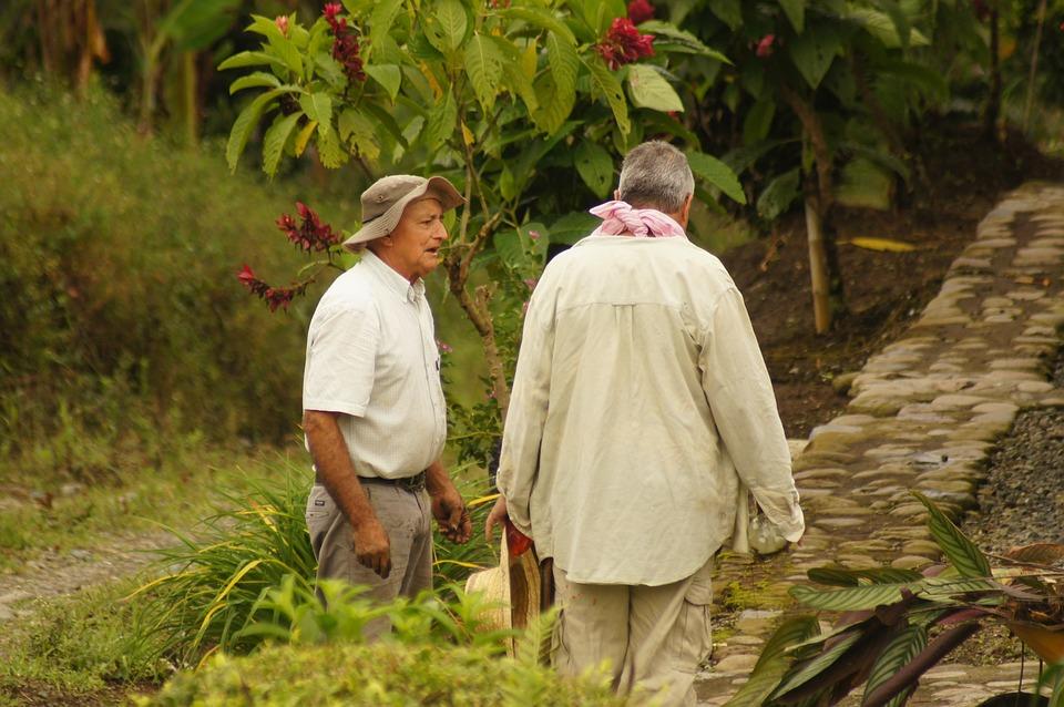 Peasants, Finlandia, Quindio, Colombia, The, Field