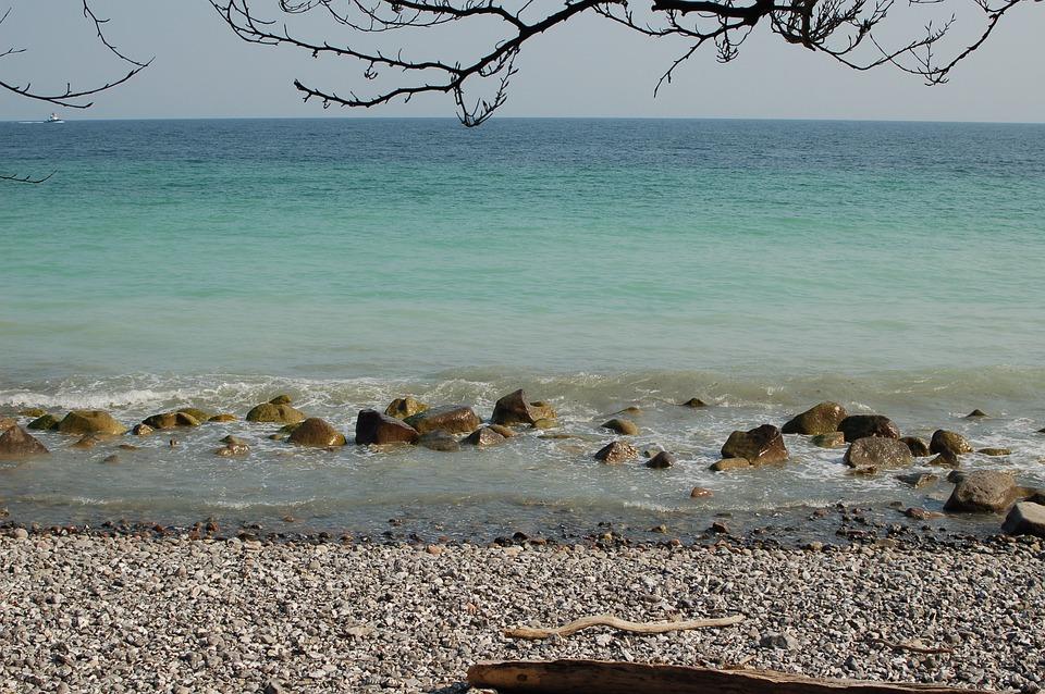 Sea, Stones, Beach, Pebble, Ocean, Horizon, Branch