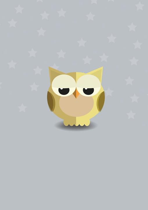 Owl, Nature, Night, Animal, Ave, Pen