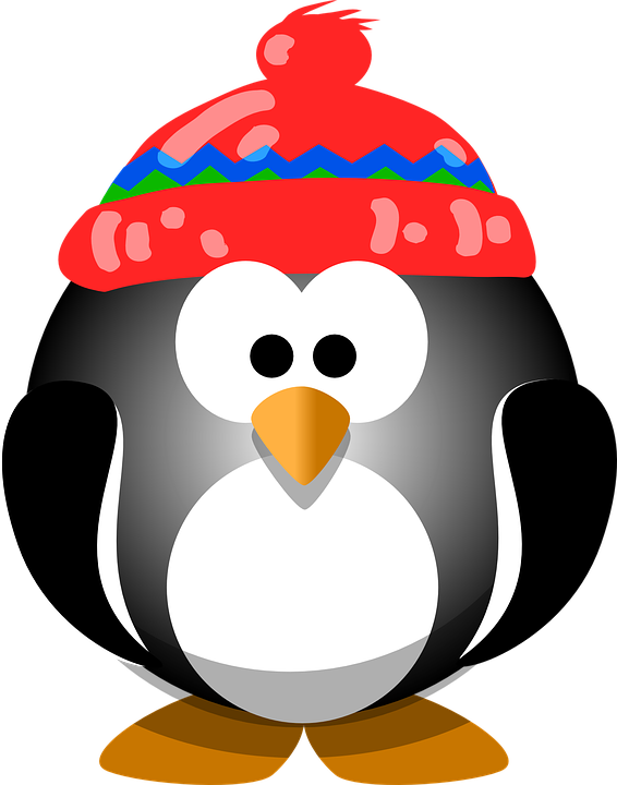 Penguin, Bird, Hat, Winter, Cute, Animal, Cold