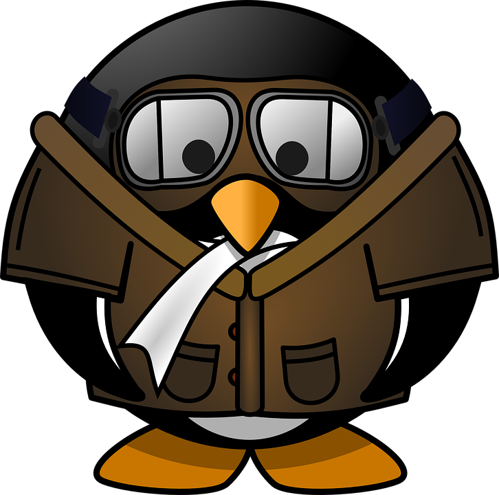Goggles, Penguin, Pilot, Cute, Funny, Smoking