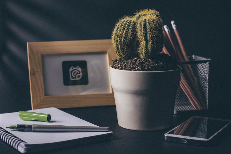 Cactus Office Desk Notebook Notepad Pens Pencil
