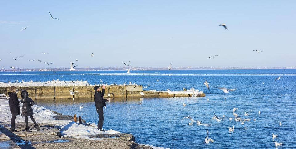 Odessa, Sea, Langeron, People, Gulls