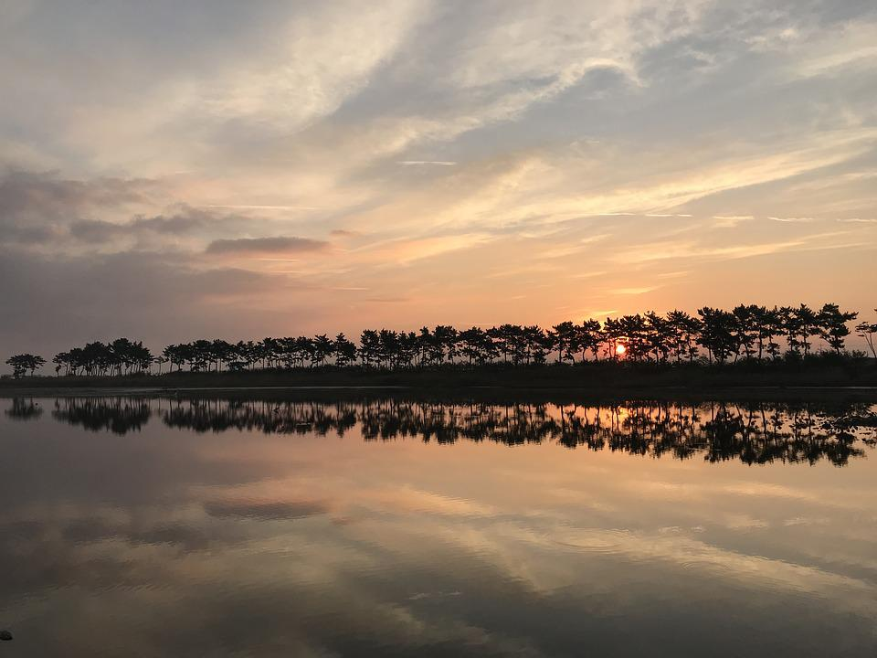 Pine, Sol Lawn, Landscape, People, Sunrise, Light, Dawn