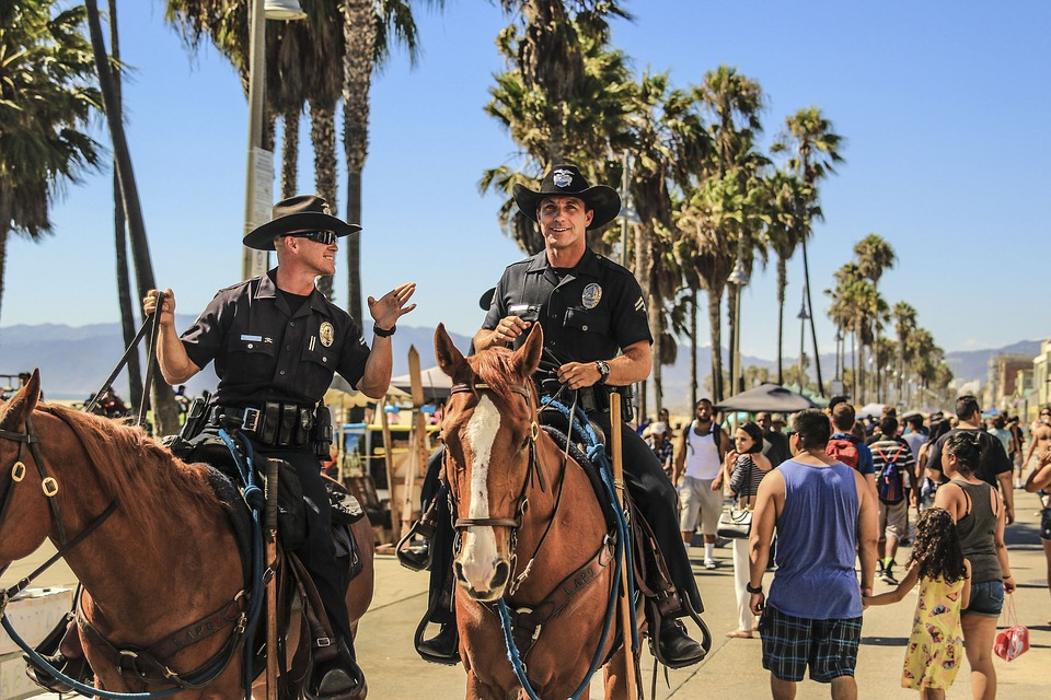 People, Man, Police, Horse, Travel, Adventure, Animal
