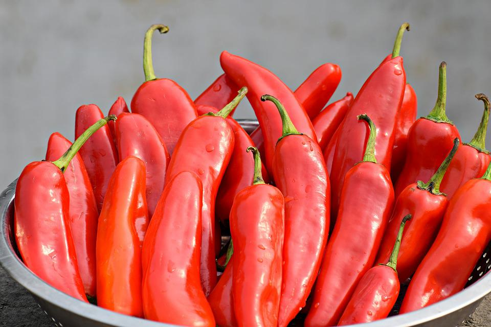 Chilies, Red, Food, Pepper, Cooking, Spice, Hot