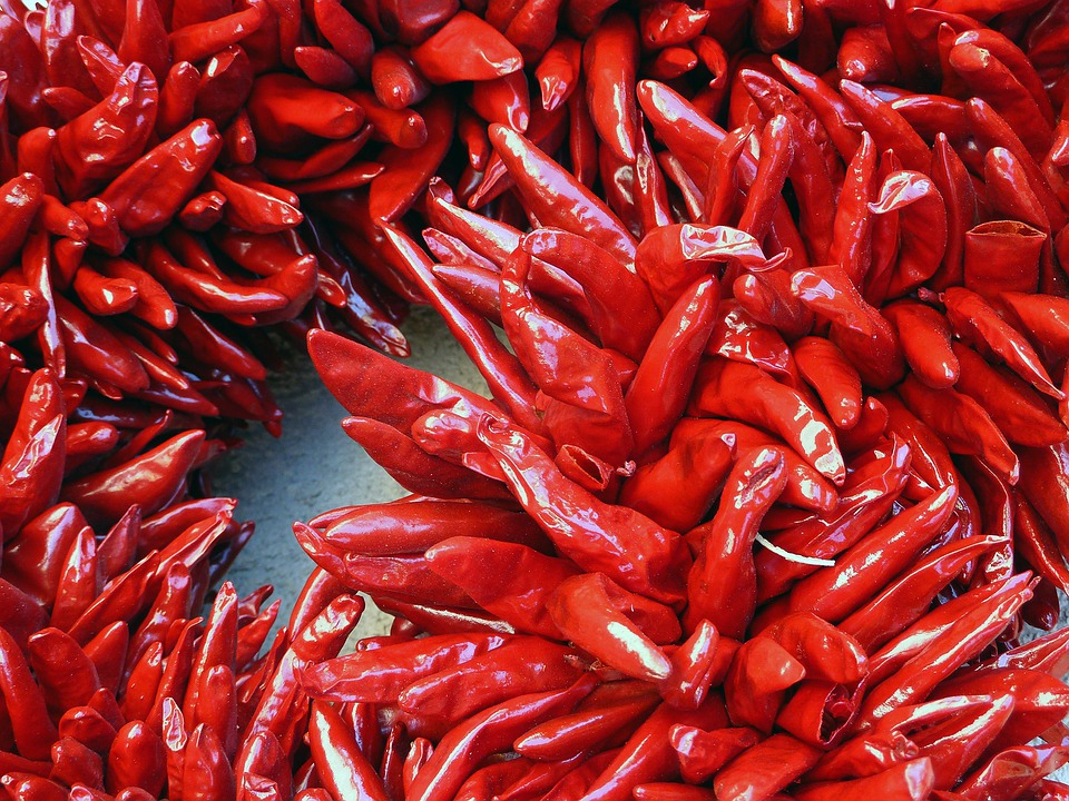 Red, Dried, Hot, Chilli, Pepper, Vegetables, Plant