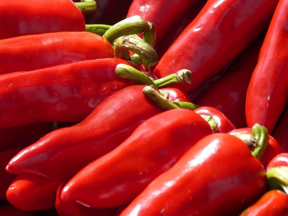 Pepper, Red Pepper, Ezpeleta, Euskal Herria, Red