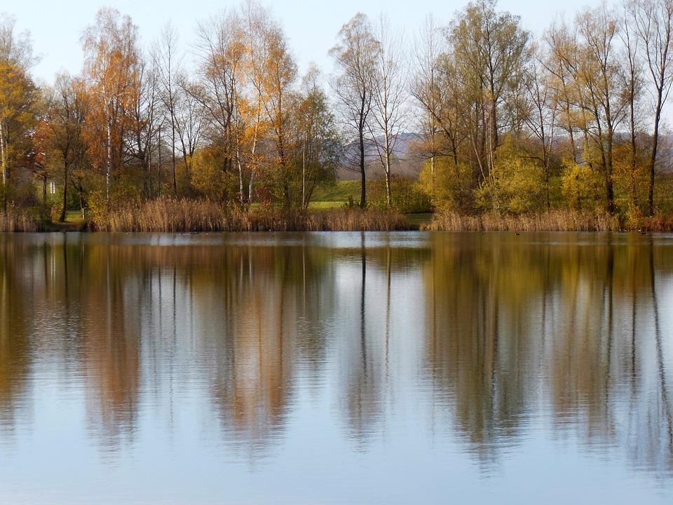 Water, Lake, Perach, Badesee, Peracher Bathing Lake