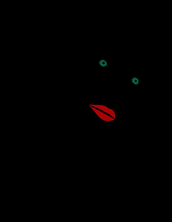 Portrait, Woman, Girl, Face, Person
