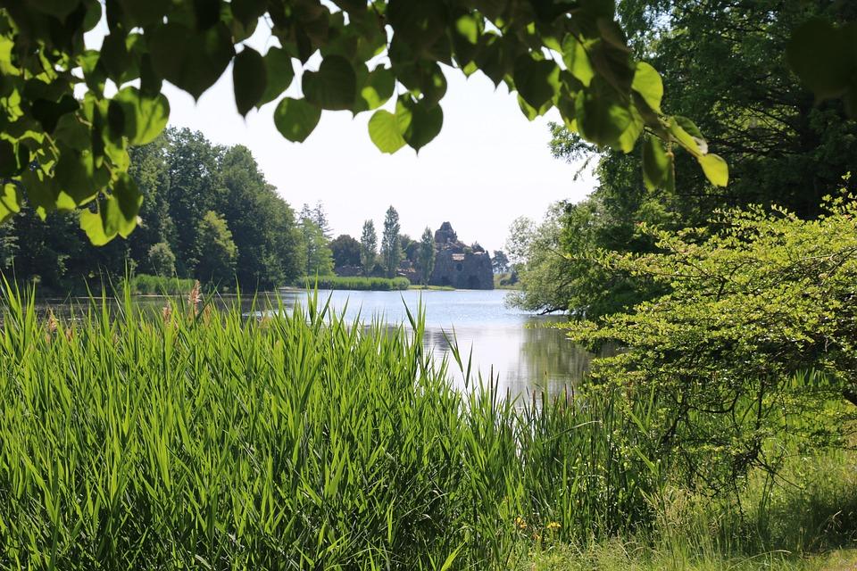 Green, Park, Nature, Spring, Landscape, Perspective