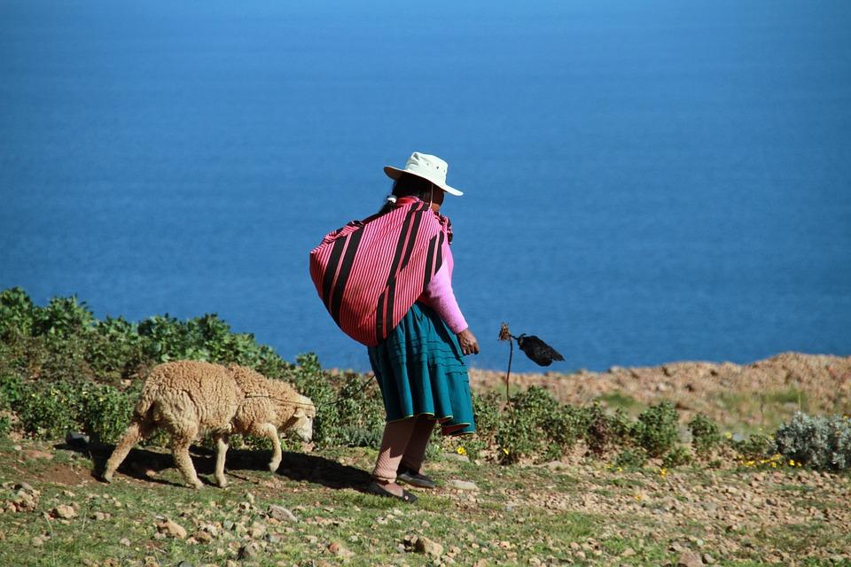 Lake, Titicaca, Peru, Andes, Island, Uros, Floating