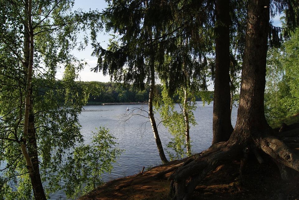 Pestovo Reservoir, Tishkovo, Moscow Region, Beach