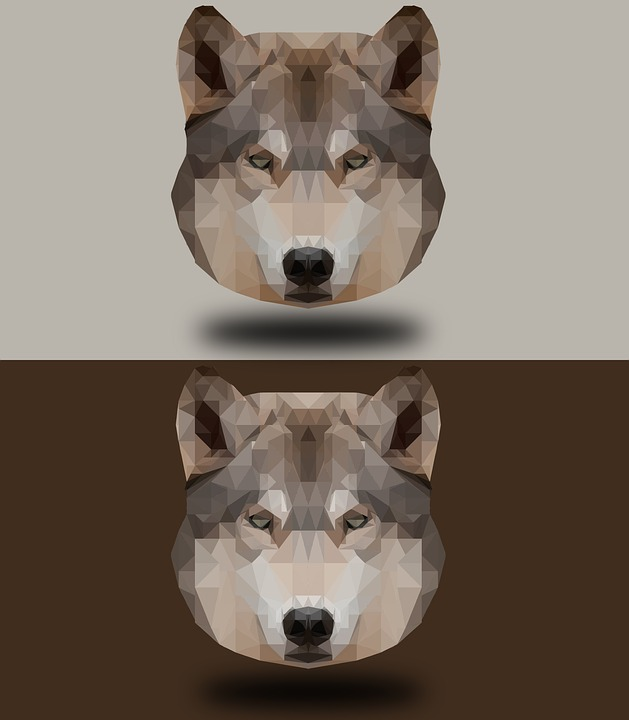 Dog, Canine, Pet, Animal, Portrait