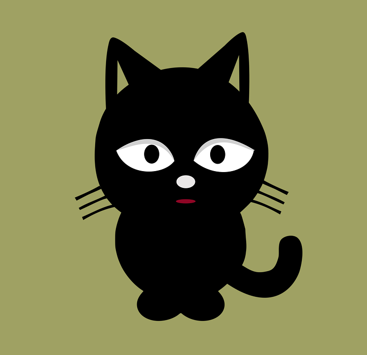 Cat, Pet, Cute, Black, Animal, Domestic, Kitten
