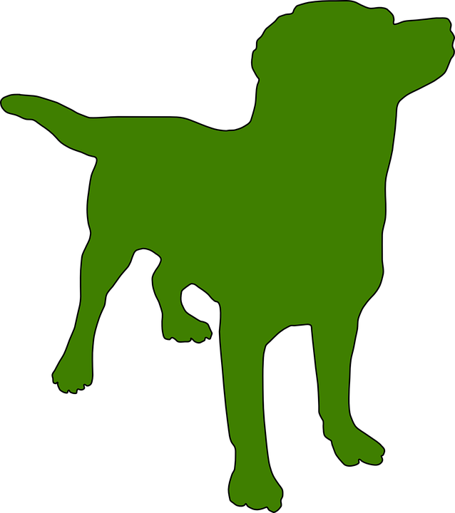 Dog, Silhouette, Pet, Animal, Stand, Wait, Green