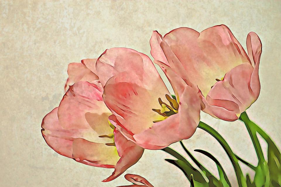 Tulip, Flower, Bouquet De Fleurs, Floral, Petal