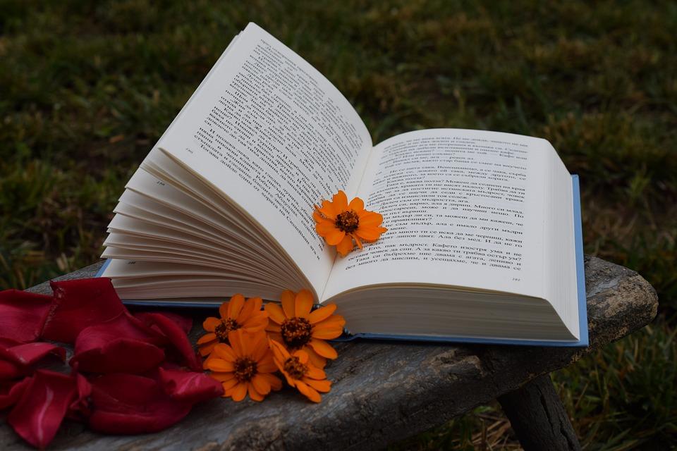 Book, Flowers, Petals, Orange