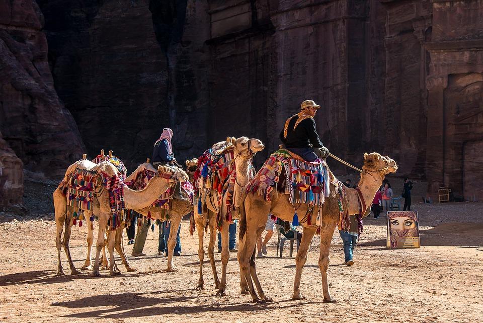 Jordan, Petra, Camel, Dromedary, Desert, People