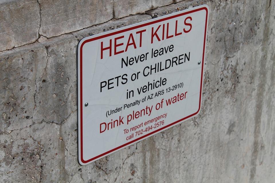 Sign, Alert, Heat, Kids, Arizona, Pets