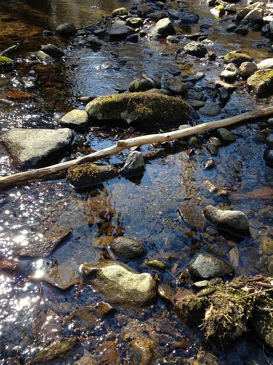 Nature, Photo, Water, Stream, Hungary