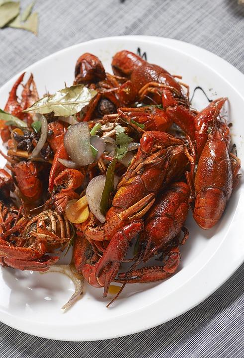 Crayfish, Shooting, Gourmet, Photography