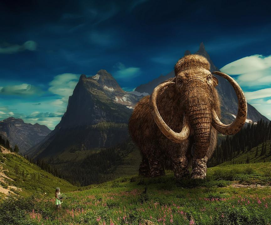 Photo Montage, Photoshop, Girl, Mammoth, Fantasy
