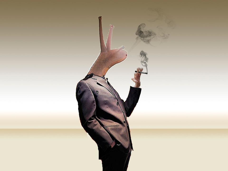 Snail, Photoshop, Smoking, Cigarette
