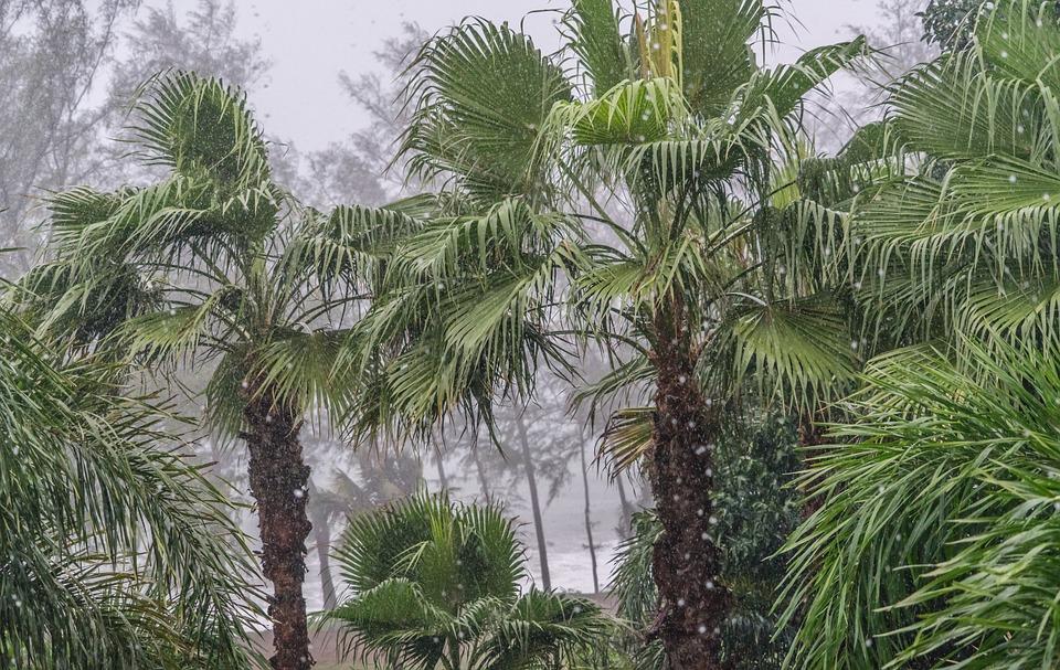 free photo phuket tropical monsoon sea thailand sky travel max pixel