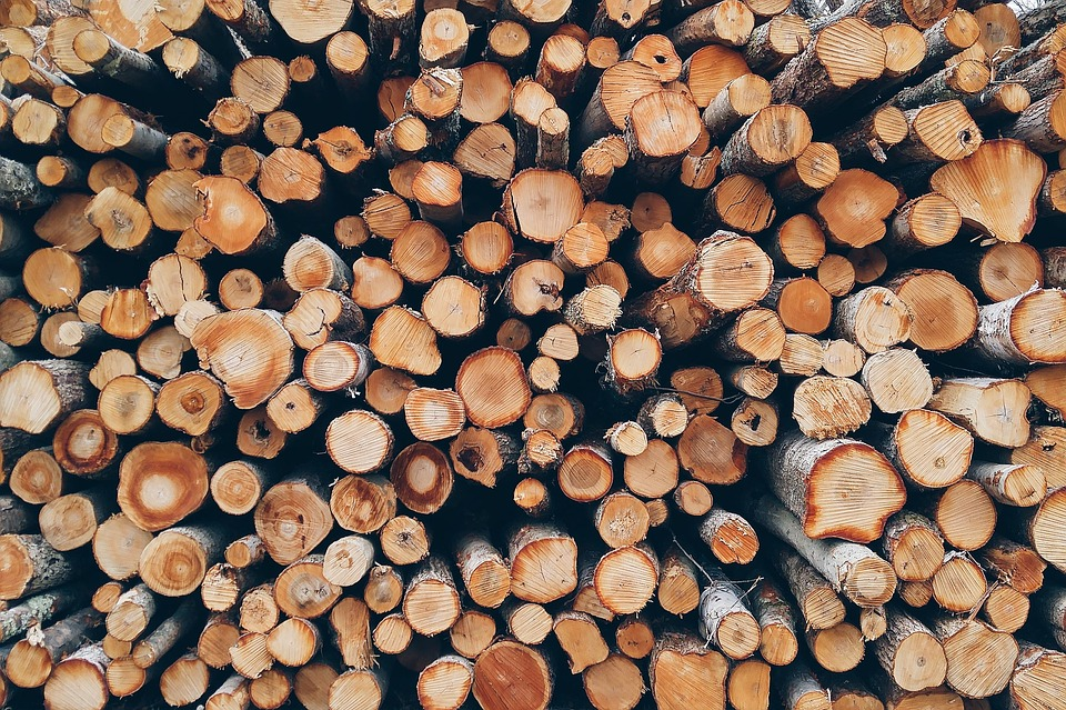 Wood, Pile, Logs, Bole, Firewood, Pieces Of Timber