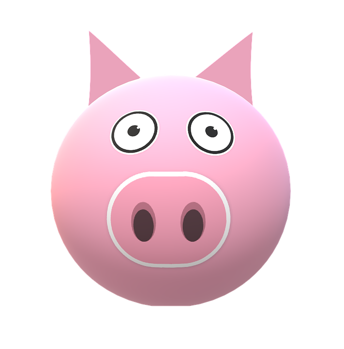 Pig, Piggy Chen, Sow, Pig Nose, Snout, Pink, Dirty
