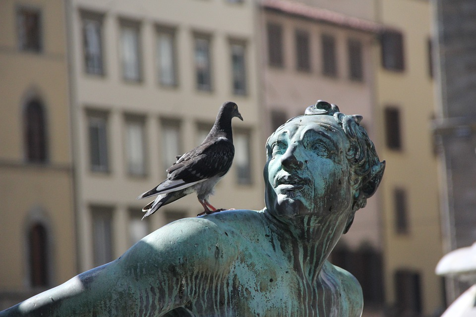Statue, Bronze, Pigeon