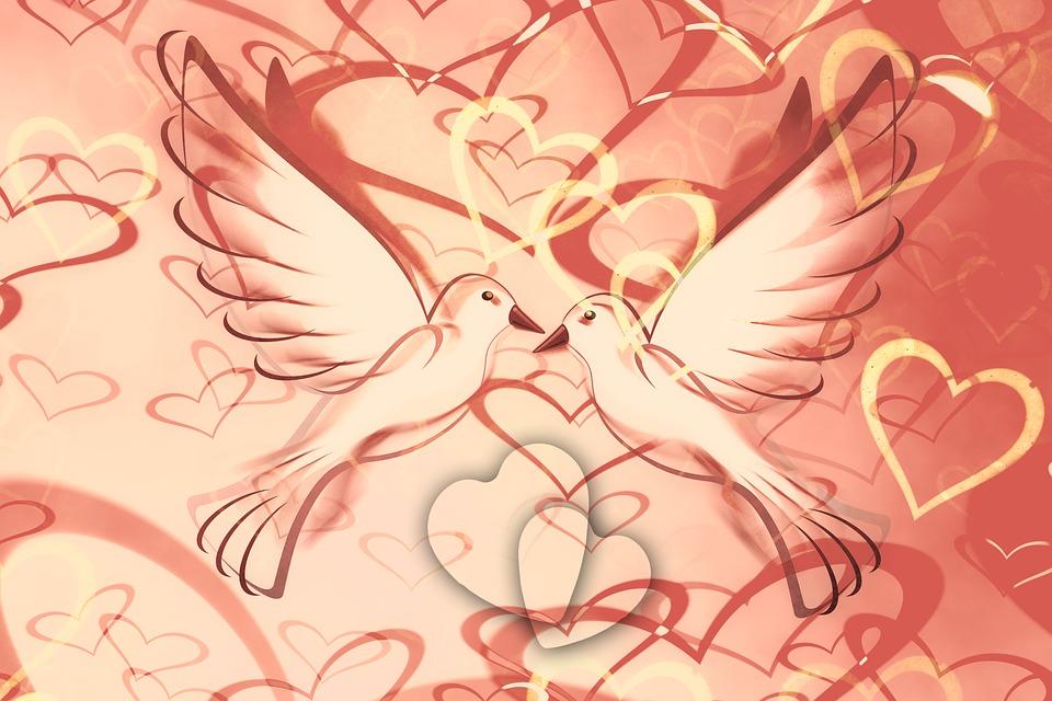 Heart, Background, Pigeons, Lovebirds