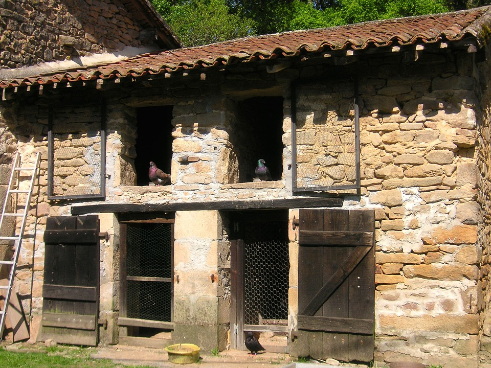 Pigeonnier, Stone Coop, Pigeons, French Pigeon House