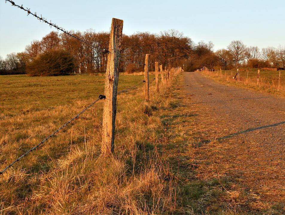 Pasture Fence, Post, Demarcation, Pile, Wooden Posts
