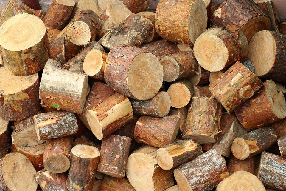 Tree, Wood, Cut The, Pile Of Wood, Cut, Sawn Timber