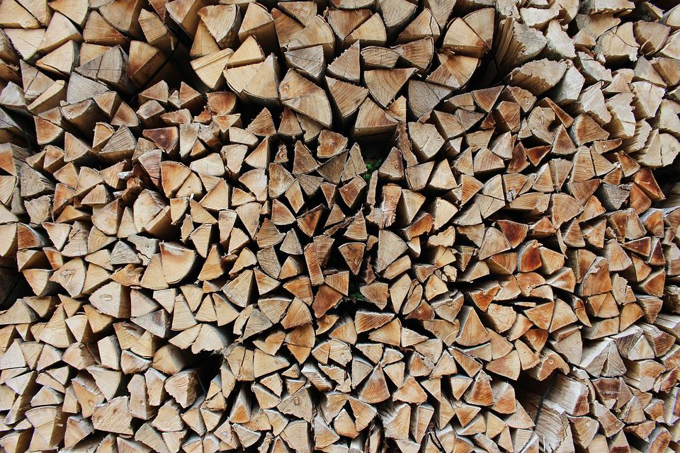 Wood, Timber, Lumber, Close Up, Pile, Tree, Forest